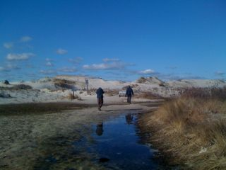Back through the dunes (can you believe this is New Jersey?)