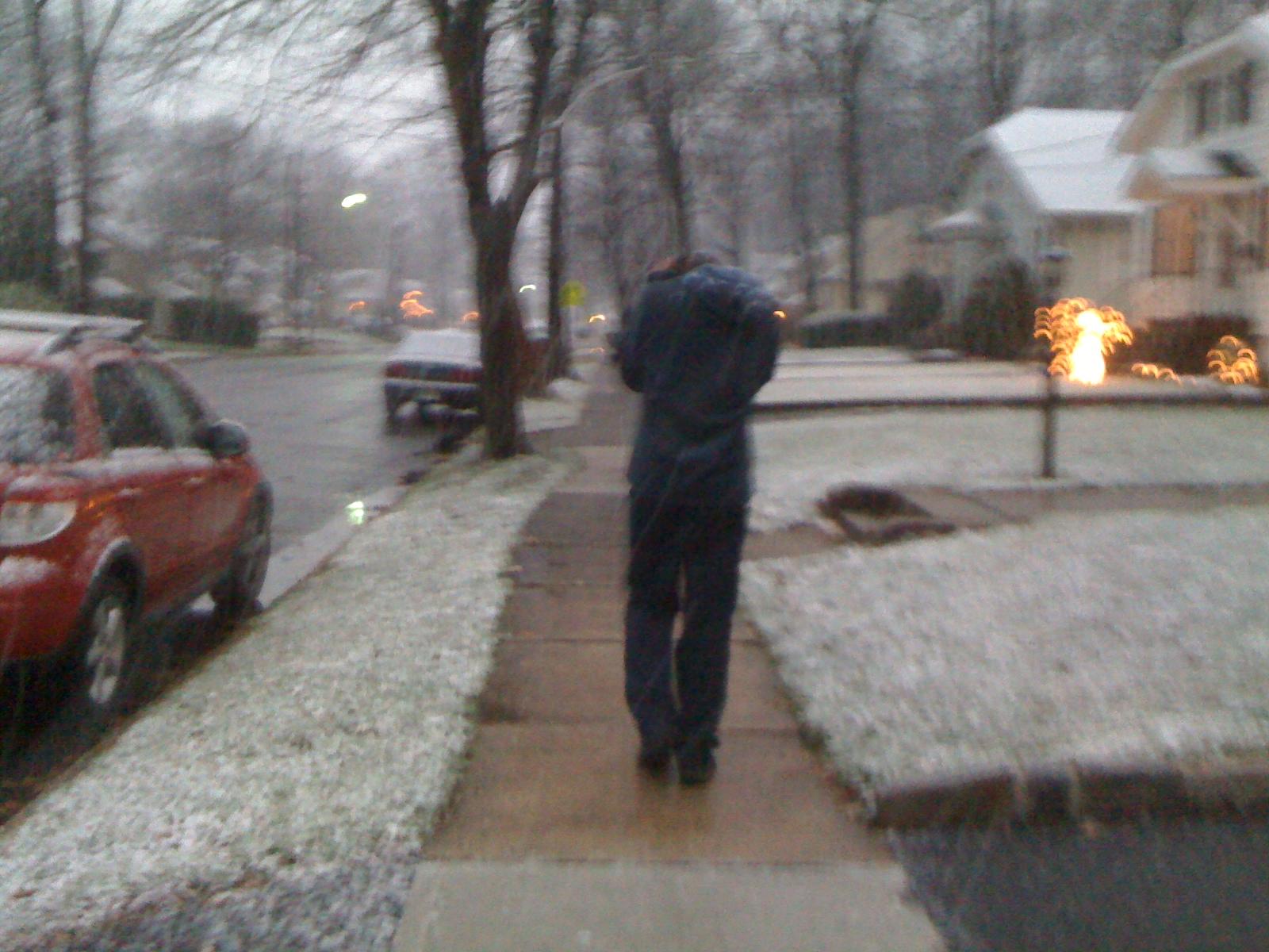 Charlie on a snowy walk