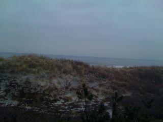 The beach in winter