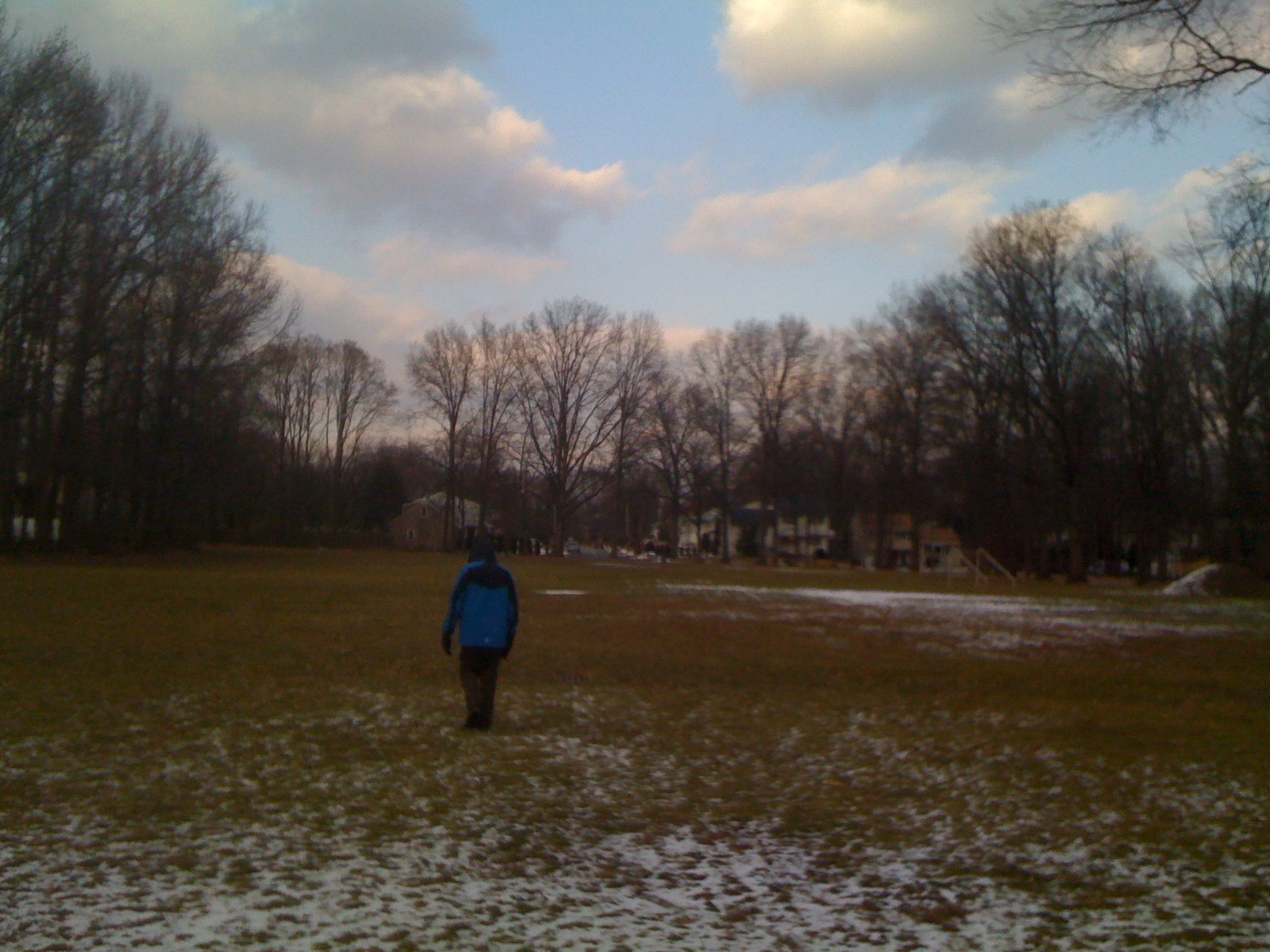 Charlie walking across a field on a somewhat snowy/sunny day