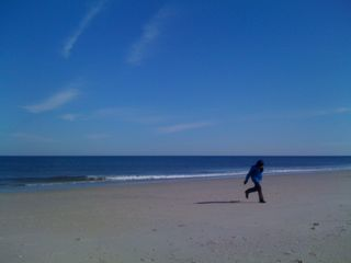 Charlie running on the beach on President's Day