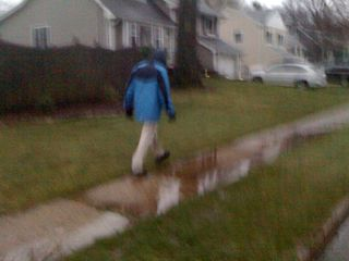 Charlie walking in the rain in late March