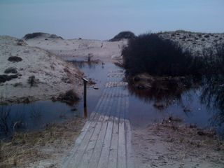 Flooded walkway through the dunes