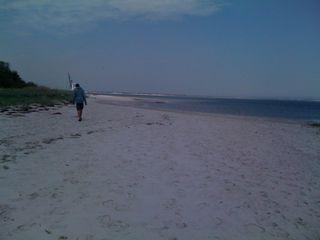 Charlie at the beach on Sunday