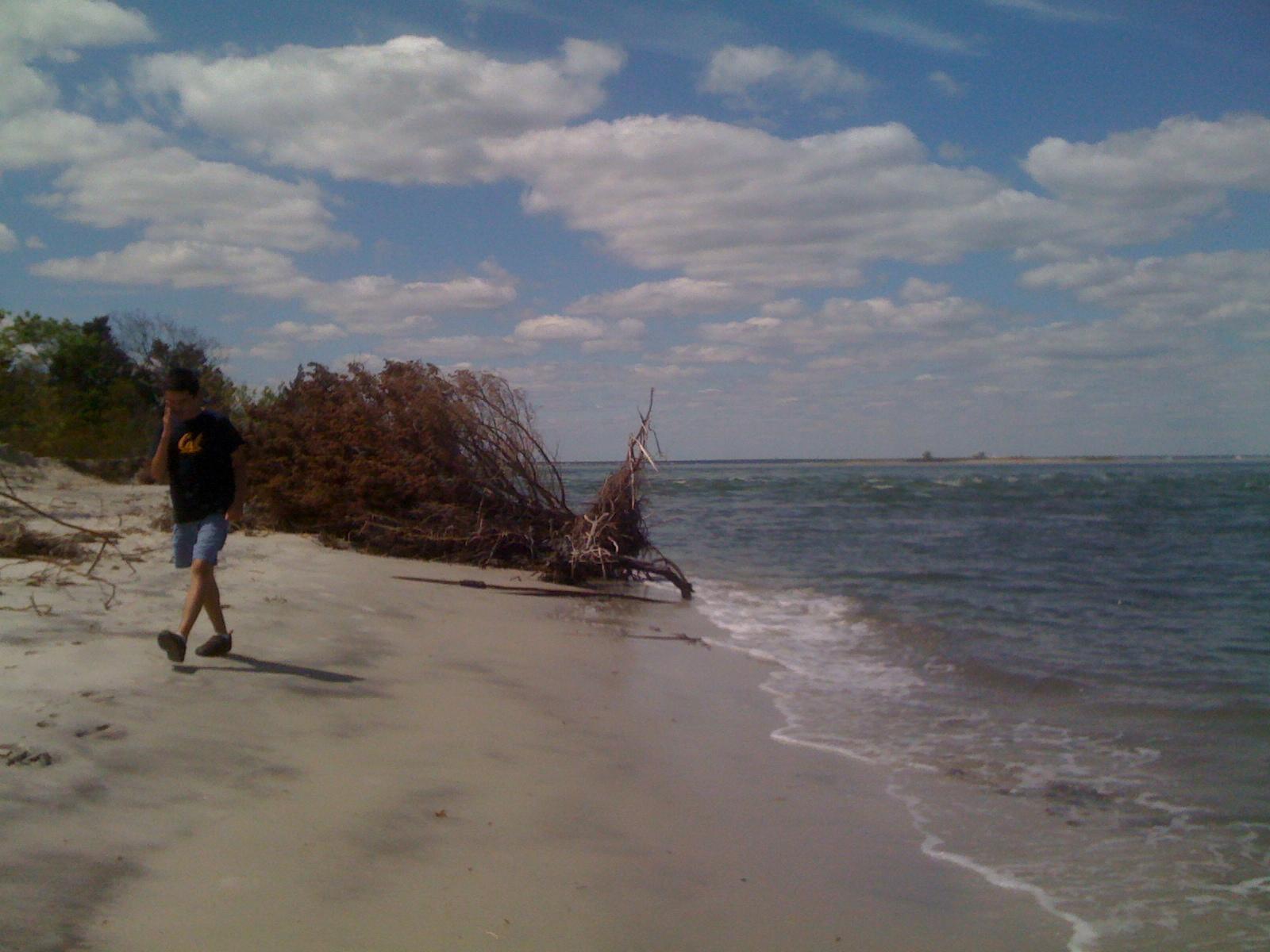 Charlie walking on the beach on Sunday