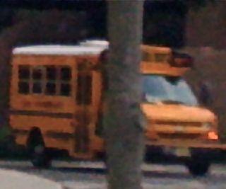 Buses_2